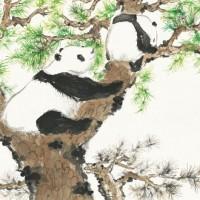 Con Lella costa in Cina sulle tracce del panda