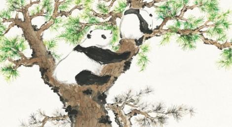 Sulle tracce del panda, Yu Rong, Editoriale la Scienza