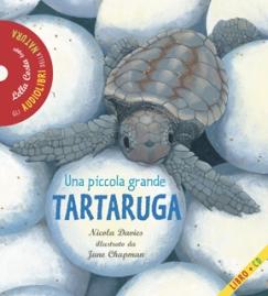 tartaruga-cop-g1