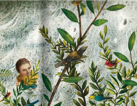 In riva al fiume di Fabian Negrin, Charles Darwin - Gallucci
