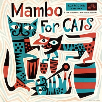 mambo-for-cats1