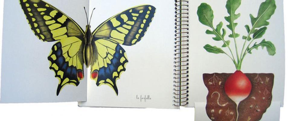 Primavera, estate, autunno, inverno, Pittau&Gervais – Topipittori