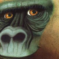 Un gorilla, un libro per contare