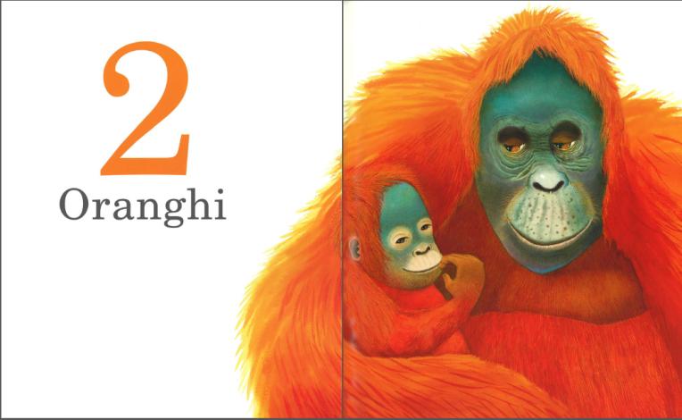 Un gorilla - Anthony Browne