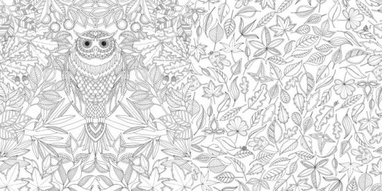 il giardino segreto. Giochi in punta di pennino , Johanna Basford - 2013, Gallucci