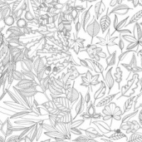 Il giardino segreto in punta di pennino di Johanna Basford