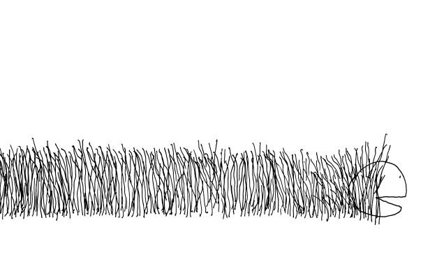 Alla ricerca del pezzo perduto di Shel SilverStein - 2013, Orecchio acerbo