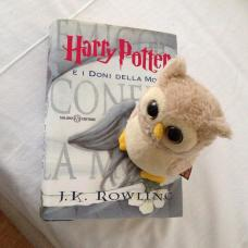 Il gufetto di Harry Potter