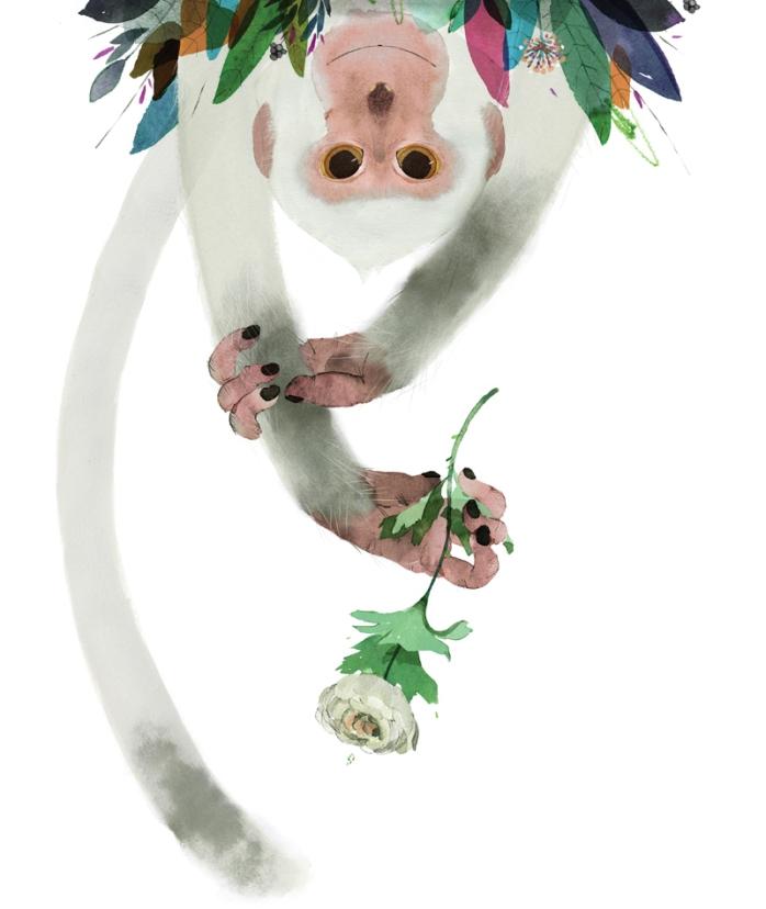 La scimmia, di Davide Calì e Gianluca Folì - 2014, Zoolibri