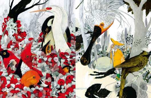 La voliera d'oro, di Anna Castagnoli e Carll Cneut - 2015, Topipittori