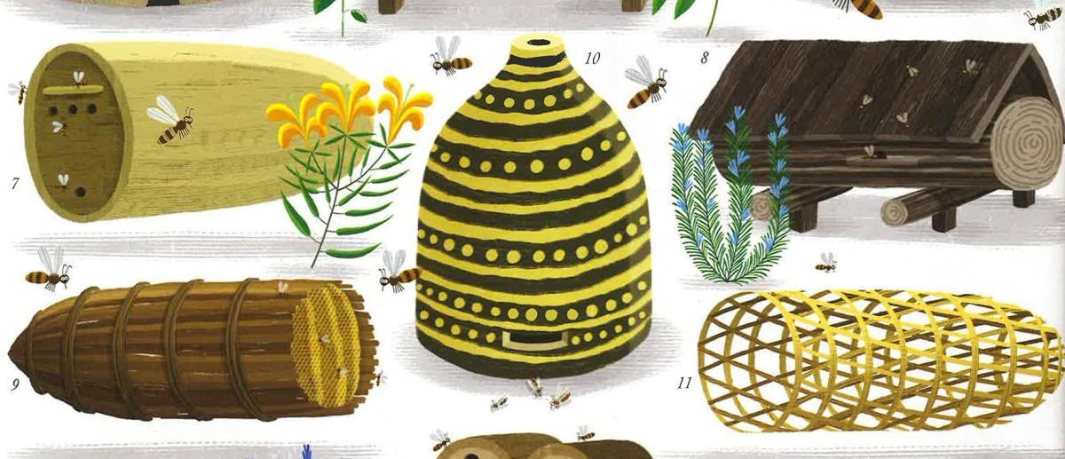 Il regno delle api