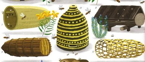 Il regno delle api di Piotr Socha, Wojciech Grajkowski - 2016, ElectaKids