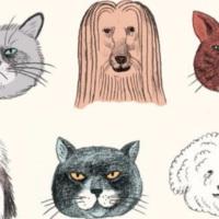 Cani e gatti sotto la lente della scienza