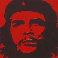 L'estate che conobbi il Che