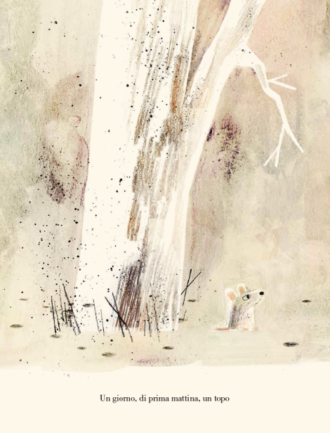 Il lupo, la papera e il topo, di Mac Barnett, Jon Klassen -2018, Mondadori