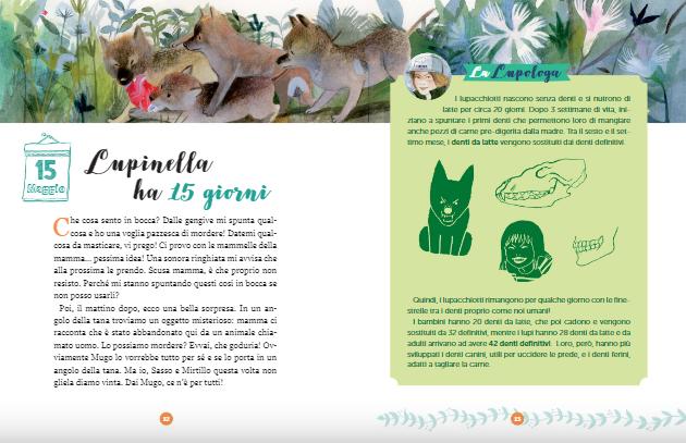 <em> Lupinella</em>, di Giuseppe Festa, Mariachiara Di Giorgio - 2018 Editoriale scienza