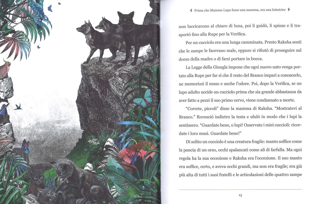 Racconti della giungla di Katherine Rundell, illustrato da Kristjana S. Williams - 2019 Rizzoli