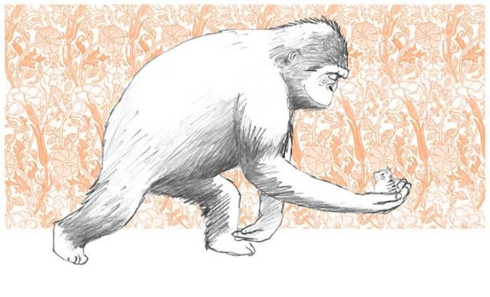 Anthony Browne, Bella e il Gorilla - 2019, Camelozampa