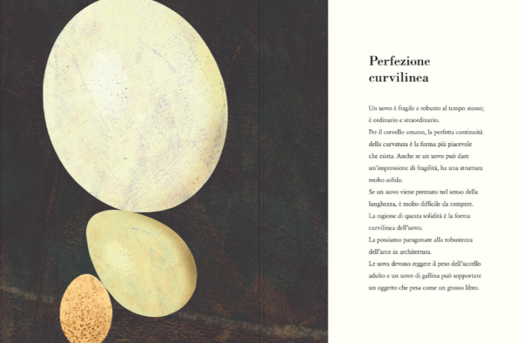 L'uovo, di Britta Teckentrup - 2020 Uovonero